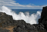 2 weeks on Mauritius island in march 2010 - 2929MK3_1942_DxO WEB.jpg
