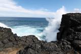 2 weeks on Mauritius island in march 2010 - 2931MK3_1944_DxO WEB.jpg