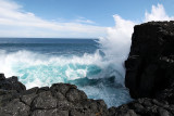 2 weeks on Mauritius island in march 2010 - 2935MK3_1948_DxO WEB.jpg