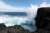 2 weeks on Mauritius island in march 2010 - 2936MK3_1949_DxO WEB.jpg