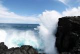 2 weeks on Mauritius island in march 2010 - 2938MK3_1951_DxO WEB.jpg