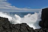 2 weeks on Mauritius island in march 2010 - 2960MK3_1974_DxO WEB.jpg