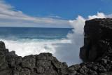 2 weeks on Mauritius island in march 2010 - 2964MK3_1978_DxO WEB.jpg