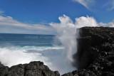 2 weeks on Mauritius island in march 2010 - 2965MK3_1979_DxO WEB.jpg