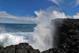 2 weeks on Mauritius island in march 2010 - 2966MK3_1980_DxO WEB.jpg