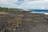 2 weeks on Mauritius island in march 2010 - 2968MK3_1982_DxO WEB.jpg