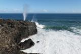 2 weeks on Mauritius island in march 2010 - 3018MK3_2045_DxO WEB.jpg