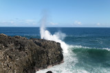 2 weeks on Mauritius island in march 2010 - 3023MK3_2050_DxO WEB.jpg