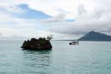2 weeks on Mauritius island in march 2010 - 2688MK3_1699_DxO WEB.jpg