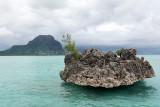 2 weeks on Mauritius island in march 2010 - 2698MK3_1709_DxO WEB.jpg