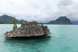2 weeks on Mauritius island in march 2010 - 2699MK3_1710_DxO WEB.jpg