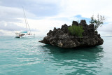 2 weeks on Mauritius island in march 2010 - 2707MK3_1718_DxO WEB.jpg