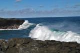2 weeks on Mauritius island in march 2010 - 3060MK3_2087_DxO WEB.jpg
