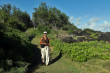 2 weeks on Mauritius island in march 2010 - 3082MK3_2111_DxO WEB.jpg