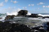 2 weeks on Mauritius island in march 2010 - 3087MK3_2116_DxO WEB.jpg