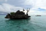 2 weeks on Mauritius island in march 2010 - 2709MK3_1720_DxO WEB.jpg