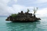 2 weeks on Mauritius island in march 2010 - 2710MK3_1721_DxO WEB.jpg