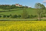 Paysage de la Côte d'Or en Bourgogne