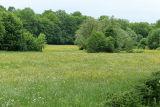 Paysage de la Côte d'Or autour de Chateauneuf en Auxois