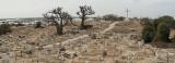 Panorama du cimetière de l'île de Fadiouth