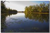 Edwards River_8783.jpg