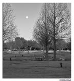 2/11 - Moon over Restland
