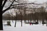 Promenade sur la neige