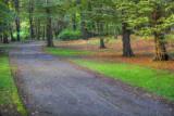 Pre-fall walk