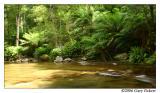 Liffey River