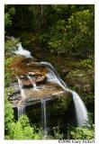 Liffey Falls