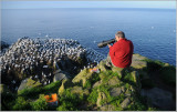 David Sparks Photographing Gannets