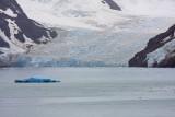 Phillipi Glacier, Drygalski Fjord