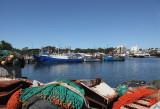 Blackwattle Bay