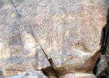 Giraffe petroglyph