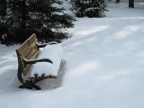 Bench After Snow, Klienberg, Ontario