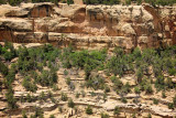 Remnants Of dwellings and kiva and the Mummy House, Mesa Verde National Park, CO