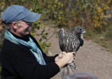 Julie holding the Gyrfalcon