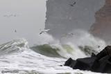 Mar nero in burrasca