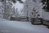Old Style Fence with Snow