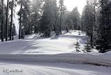 Wintery day