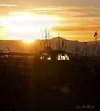 Sunrise Saturday Morning