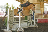Hunter/Jumper show 9/16/12 Expo