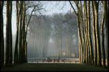 WM-2008-02-24---0021---Versailles---Alain-Trinckvel.jpg