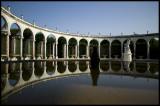 W-2008-06-08 -0261 - Versailles - Alain Trinckvel.jpg