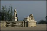 W-2008-06-01 -0235 - Versailles - Alain Trinckvel.jpg