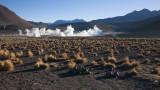 W-2009-08-19 -0872- Atacama - Alain Trinckvel.jpg