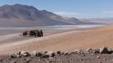 W-2009-08-19 -2192- Atacama - Alain Trinckvel.jpg