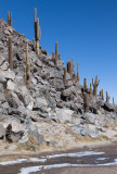 W-2009-08-19 -1295- Atacama - Alain Trinckvel.jpg
