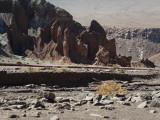 W-2009-08-19 -1921- Atacama - Alain Trinckvel.jpg