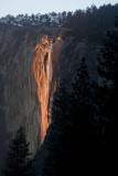 W-2011-02-09-0426- Yosemite -Photo Alain Trinckvel.jpg